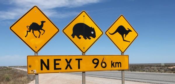 australia-trip-with-caravan-1140x550